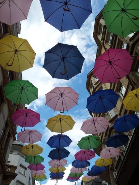 Dem Graf von Luxemburg seine Regenschirme